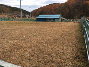 貝ノ坂牧場草場